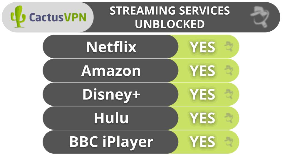 CactusVPN Streaming & Torrenting
