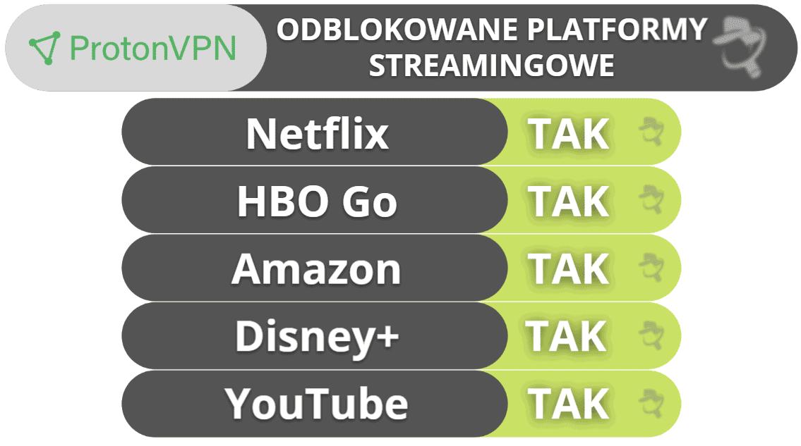 Streaming i torrenty przez sieć ProtonVPN