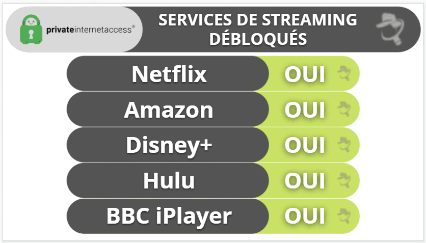 Private Internet Access : Streaming et torrent
