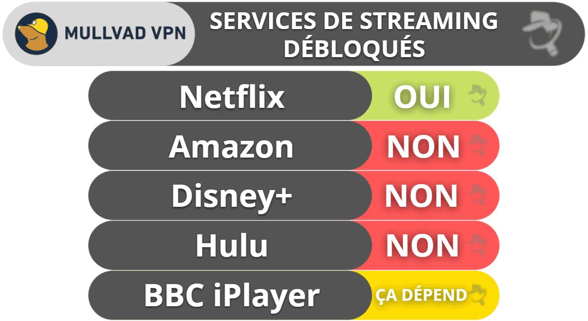 Mullvad VPN : Streaming et torrents