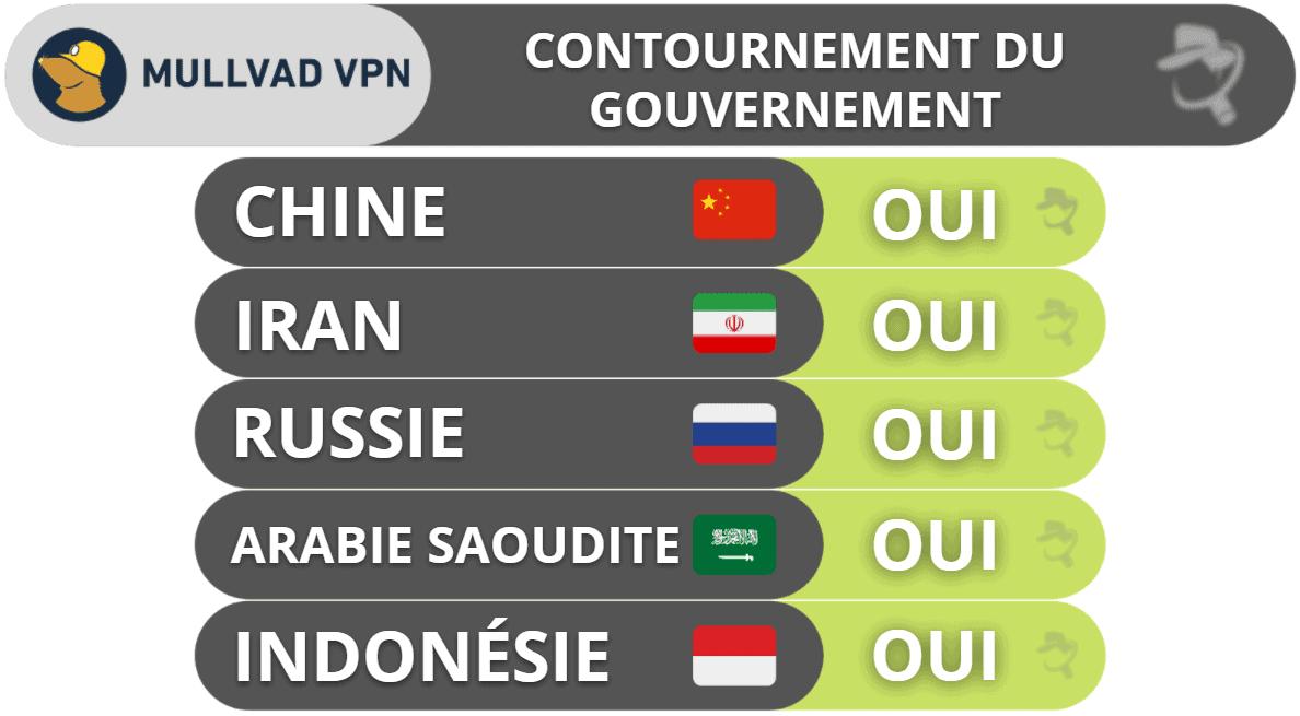 Mullvad VPN : Contournement du gouvernement